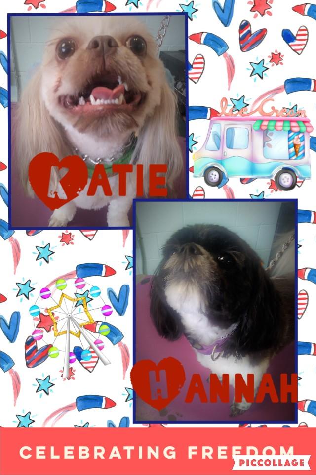 Hannah & Katie