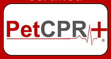 Pet CPR, First Aid
