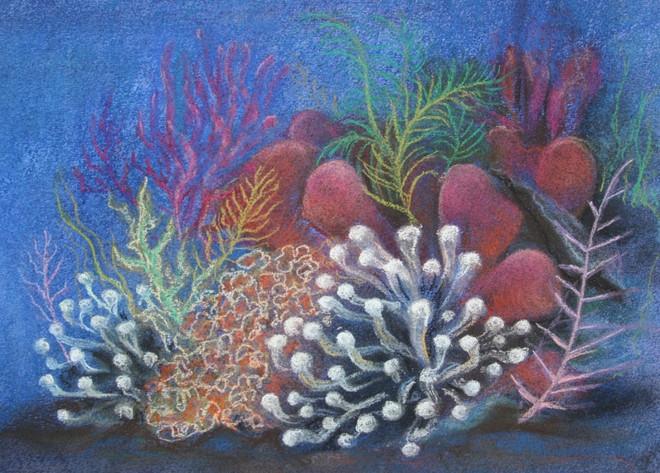 Sapphire Reef