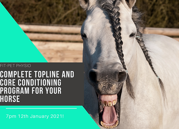 Complete Equine Topline and Core Conditioning Program