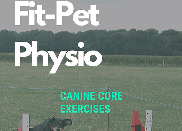 Canine Core Exercises