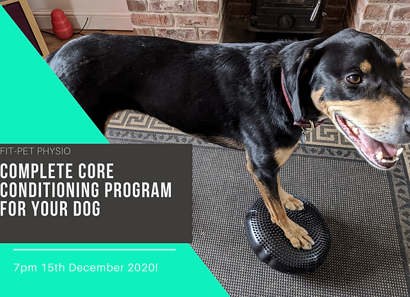 Complete Canine Core Conditioning Program
