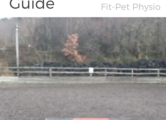 The Complete Equine Fitness Guide