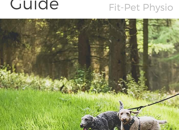 The ultimate canine fitness guide