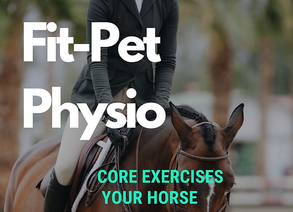 Equine Core Exercise