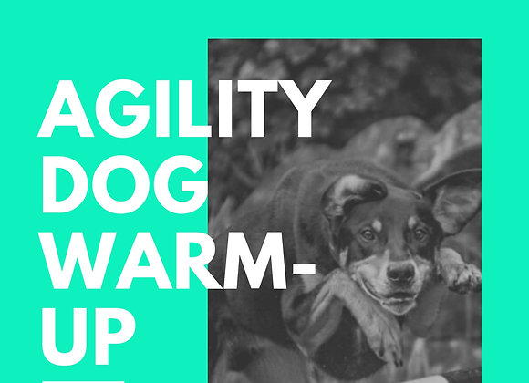 Agility Warm-ups Workshop Online