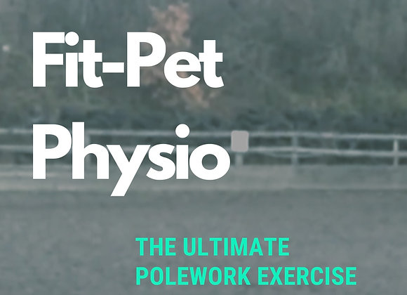 Ultimate polework guide