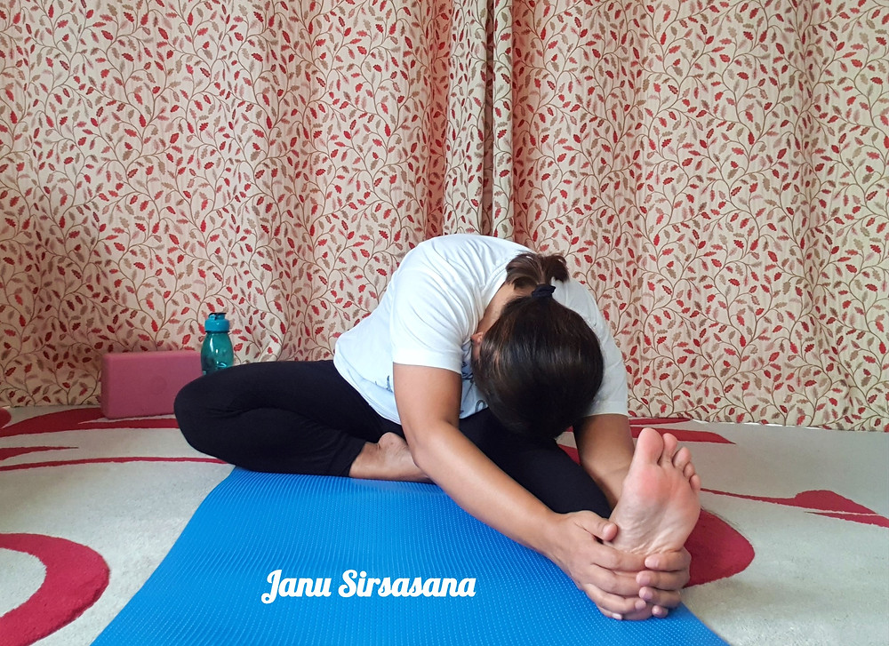 Yoga pose , Head to knee pose. Janu Sirsasana