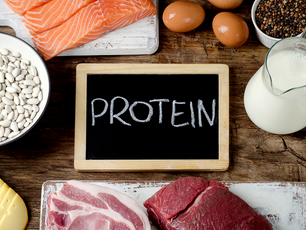 Protein - the Building Block of Life