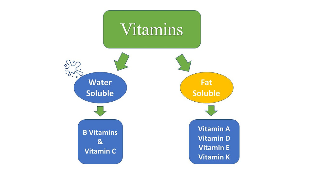 Graphical presentation of Types of Vitamins