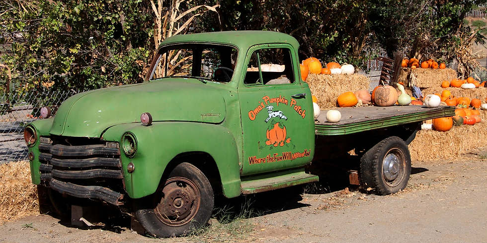 Oma's Pumpkin Patch - San Diego, CA