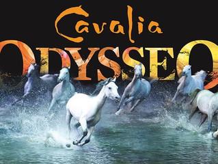 Odysseo Cavalia in Camarillo