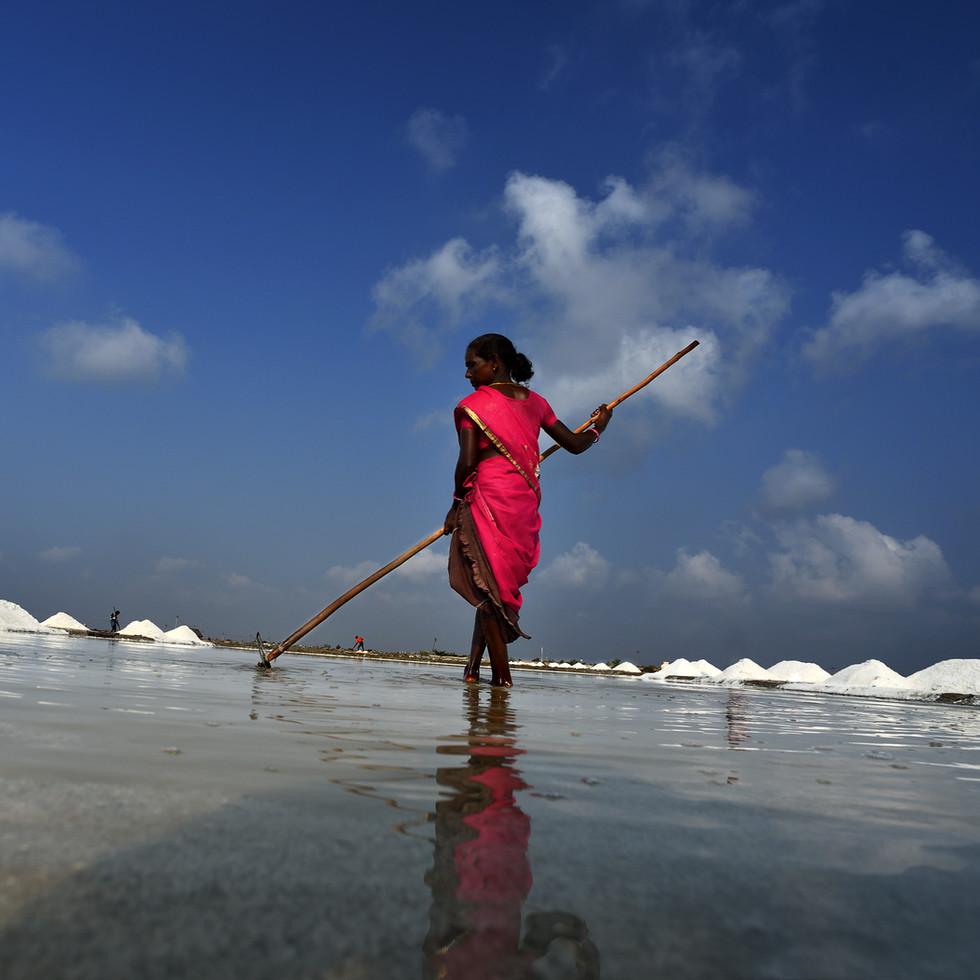Vedaranyam Salt Pan