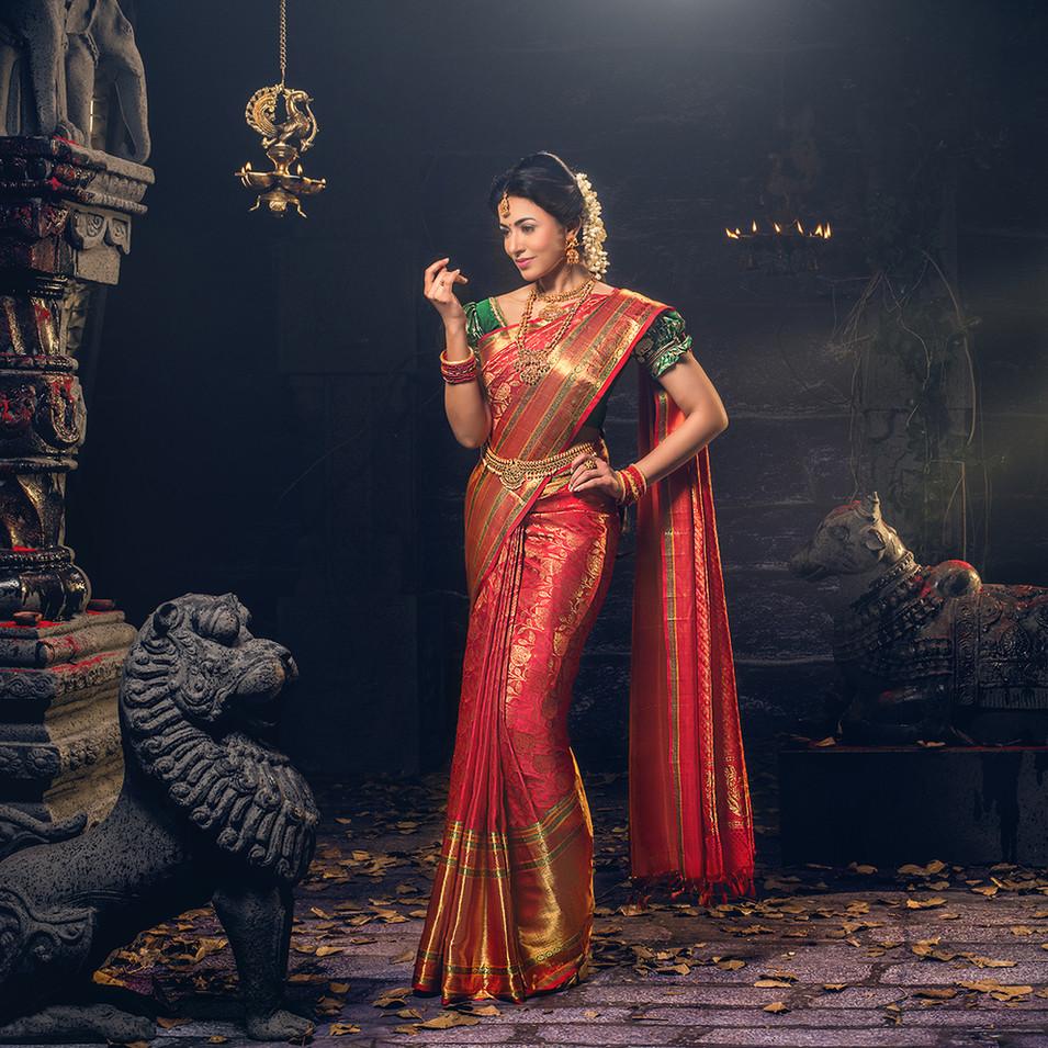Silk saree photo shoot