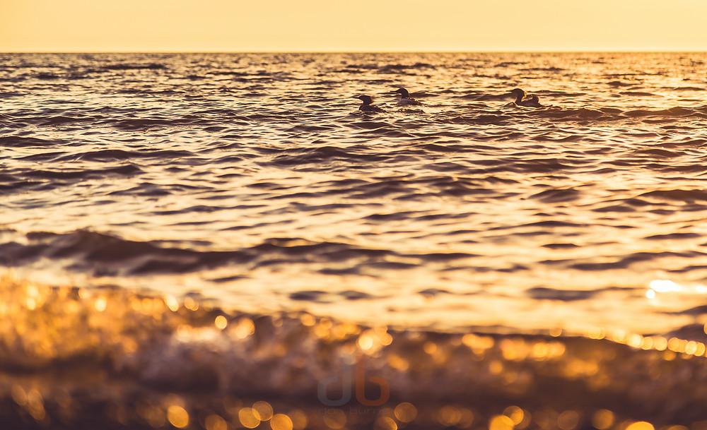 20150429-Lake Erie Spring-3.jpg