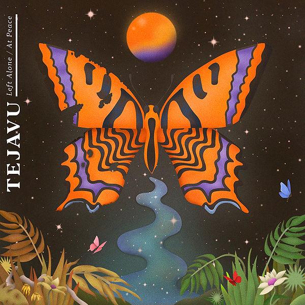 TEJAVU_ButterflyHD_website.jpg
