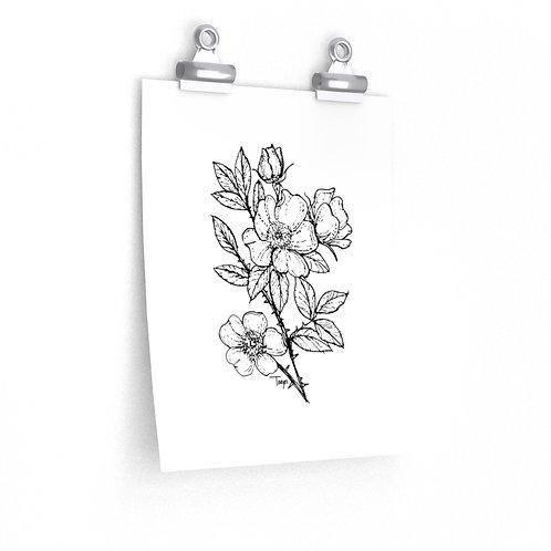 Wild Roses - Limited Ed. Art Print
