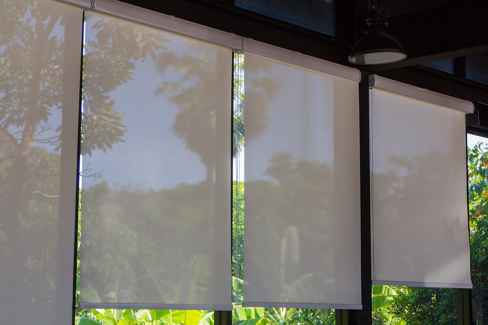 Roller Blinds at the glass window, white
