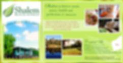 Shalem promo banner (1).jpg