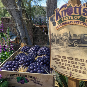 Taste of Boysenberry Festival - Opening Weekend