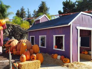 "Daytime ""Knott's Spooky Farm"" Fun!"