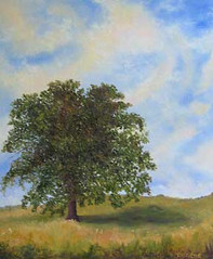 Oak Tree in the Pasture