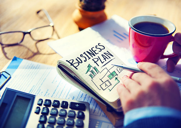 Business plan optimization