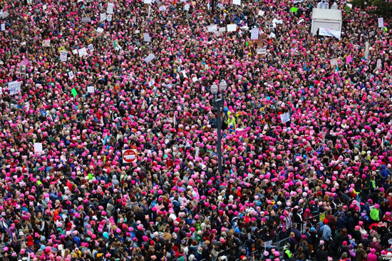 The Womens' March on Washington, 2017