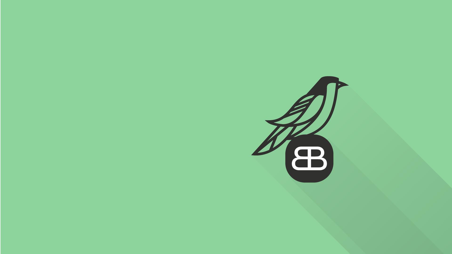 (c) Blackbirddesign.ch