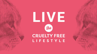 Making the List of Cruelty Free Brands