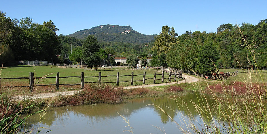 Panoramica dell'Azienda Agricola Nicolini, Agriturismo