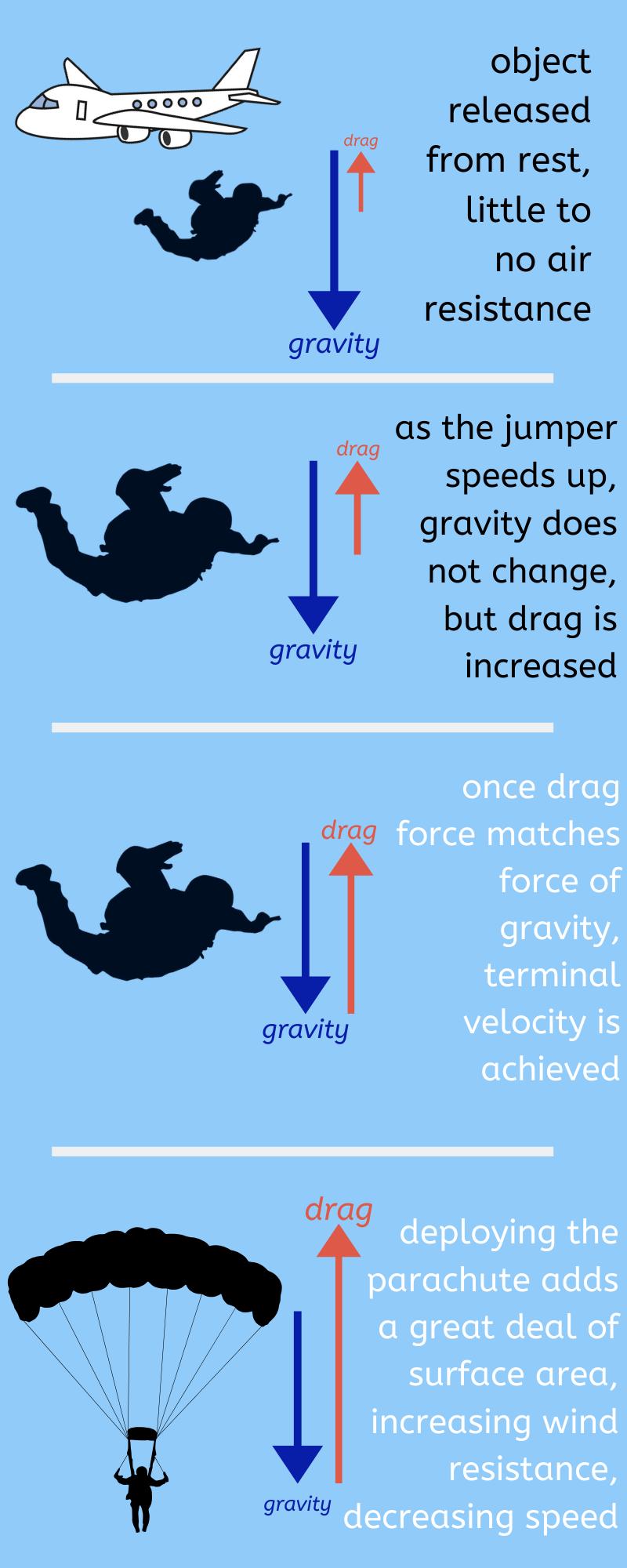 four panel terminal velocity infographic