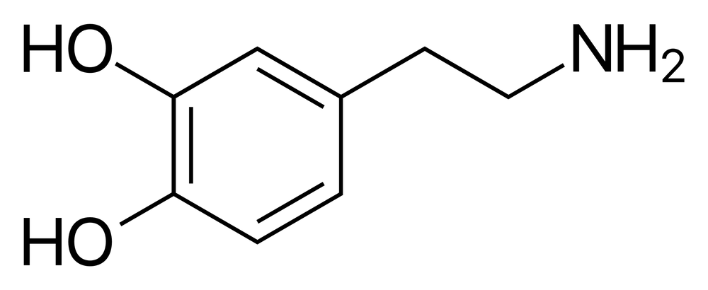 an illustration of dopamine
