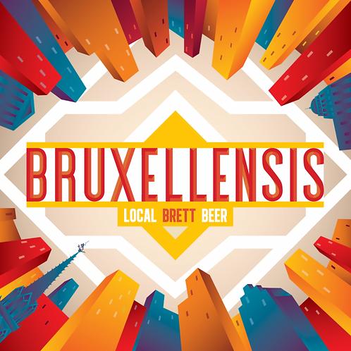 Bruxellensis 33cl - Brasserie de la Senne