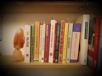 ארון הספרים ההורי