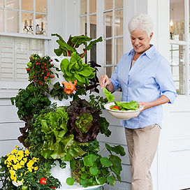Tower Garden with Lady.jpg