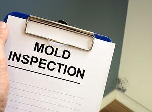 Mold Inspection.jpeg