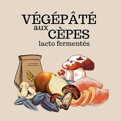 Végépâté aux cèpes lacto fermentés