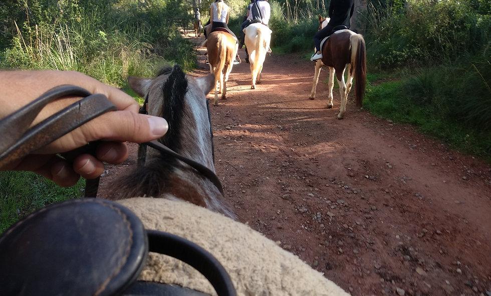 Paseo a Caballo en Castelldefels en Privado