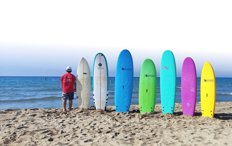 tablas de surf.jpg
