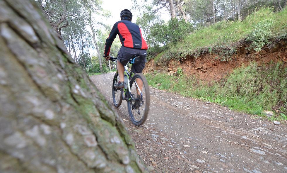 Alquiler de Bicicleta en Castelldefels