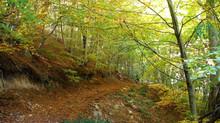 Cataluña, un paraíso para la bicicleta de montaña
