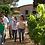 Thumbnail: Private Tour to Penedés Region with Cava Tasting