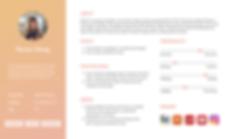 user persona orange.png