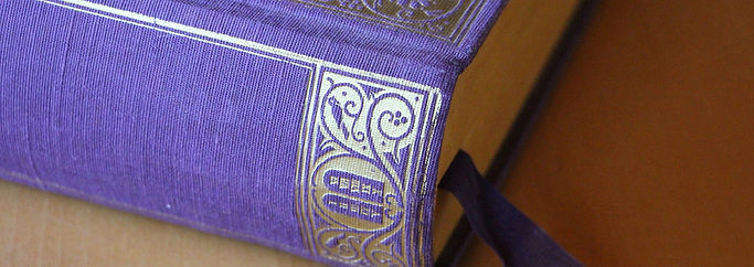 bids-4307520_1920_edited.jpg