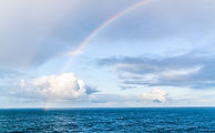 rainbow-4468783 2450.jpg