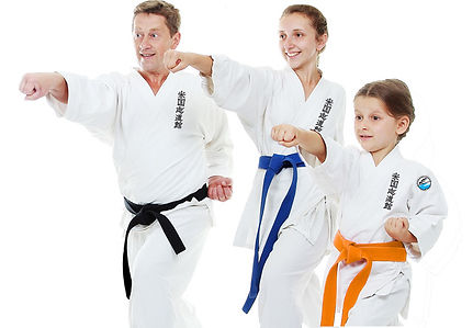 family_Karate-452018599.jpeg