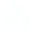 Flower icon - white.png