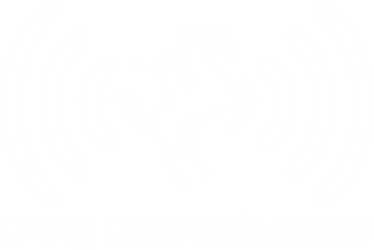 Crazy Communications Logo - white.png