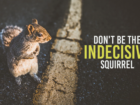 Don't Be The Indecisive Squirrel In The Middle Of The Road